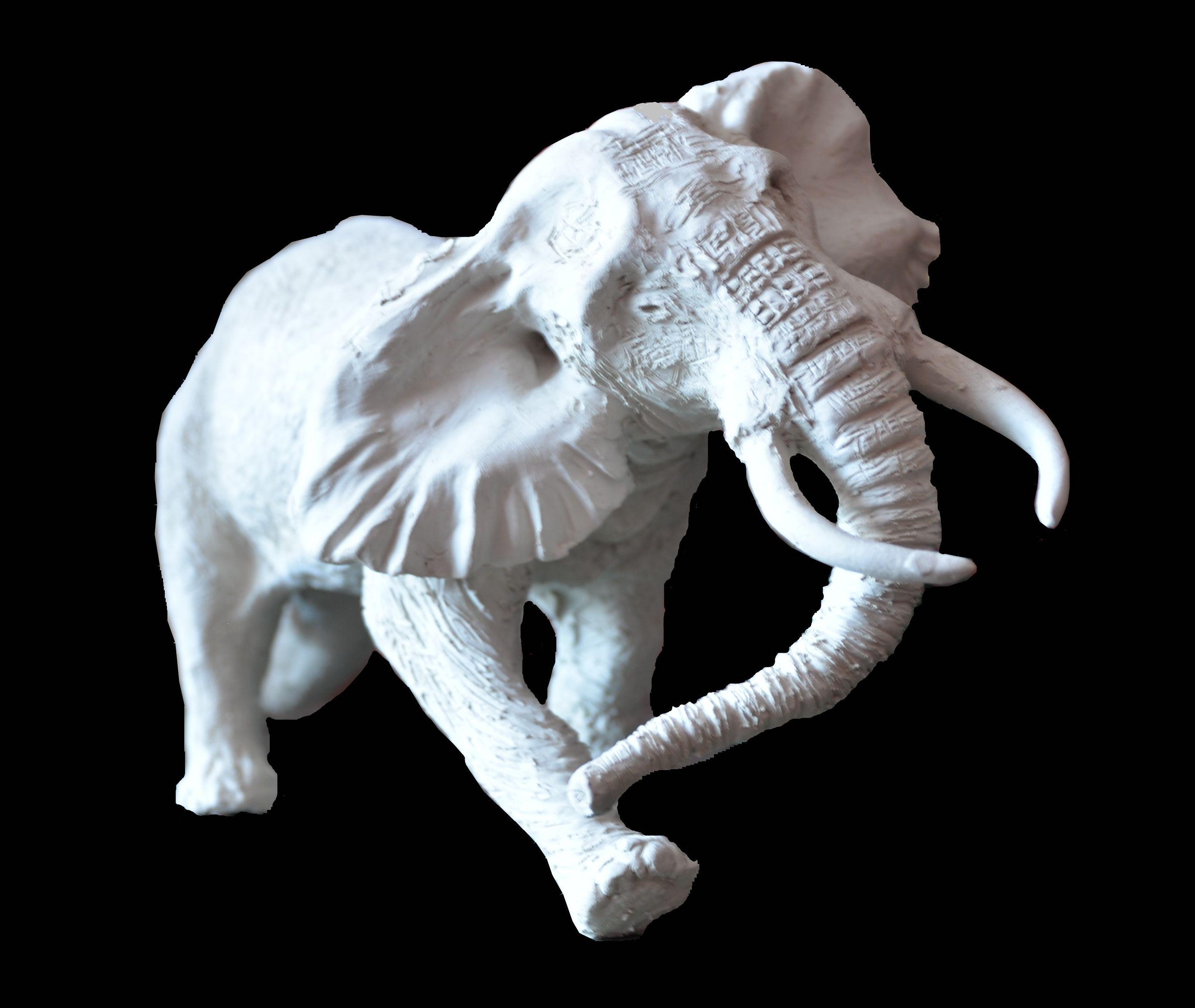 TRONCHET-PETIT ELEPHANT VUE1